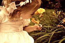 花の匂いの画像(プリ画像)