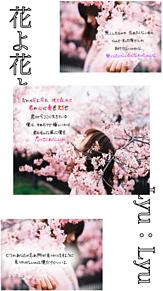 28° 「花よ花よ」の画像(プリ画像)