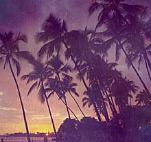 ハワイアン♡の画像(プリ画像)