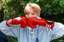 ボクシングするグクの画像(ボクシングに関連した画像)