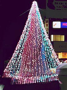 冬のイルミネーションの画像(クリスマスツリーに関連した画像)
