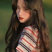 ペンガの画像(サブカル/韓国に関連した画像)