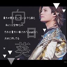 ・向日葵/岡本圭人・の画像(セカオワに関連した画像)