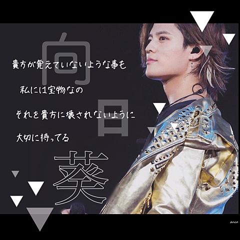 ・向日葵/岡本圭人・の画像 プリ画像