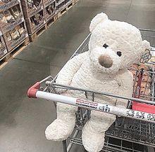 Costco 熊 ゆいぐるみ 白 赤 夢かわいいの画像(リアに関連した画像)