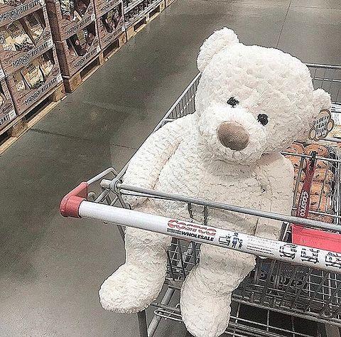 Costco 熊 ゆいぐるみ 白 赤 夢かわいいの画像 プリ画像