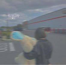 Costco コストコ IKEA うさぎ 後ろ姿 青春 ボブの画像(モデル 白に関連した画像)