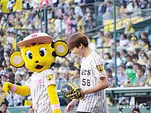 BTS阪神タイガースの画像(阪神タイガースに関連した画像)