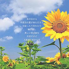 あの日から何度目の夏が来ただろうの画像(プリ画像)