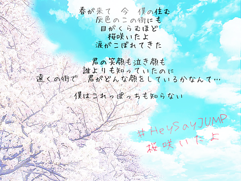桜咲いたよ!の画像(プリ画像)