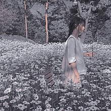 Flower gardenの画像(いい女に関連した画像)