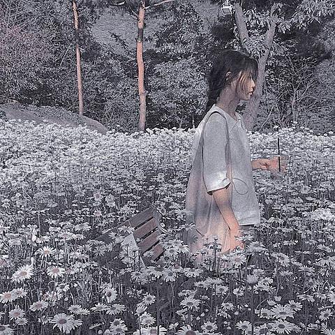 Flower gardenの画像 プリ画像