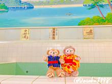 ✨江戸東京たてもの園withダッフィーandシェリーメイ✨ プリ画像