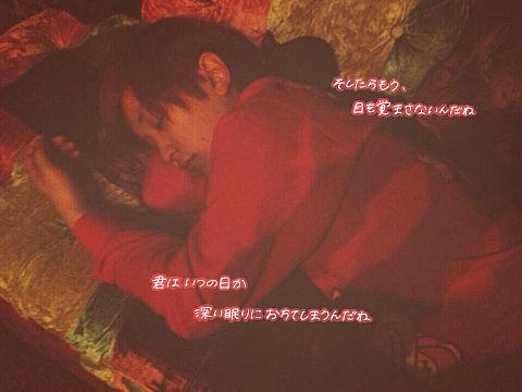 ー 眠り姫 ーの画像 プリ画像