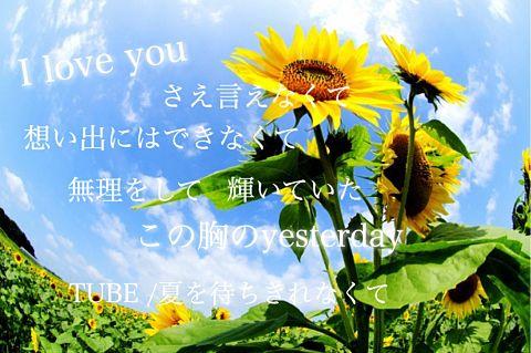 TUBE/ 夏を待ちきれなくての画像(プリ画像)