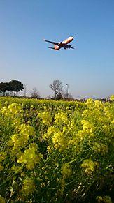 ✈︎福岡空港✈︎ ✨ベストショット✨ プリ画像