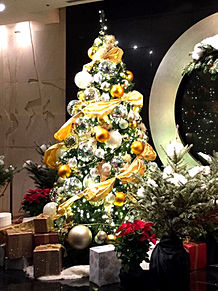 きれいなクリスマスツリー ホテルニューオータニの画像(ホテルニューオータニに関連した画像)