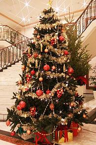 おしゃれなクリスマス ホテル日航プリンセス京都の画像(京都に関連した画像)