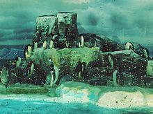 ペンギン 水族館 生き物の画像(生き物に関連した画像)