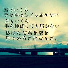 叶わぬ恋の画像(眺めに関連した画像)