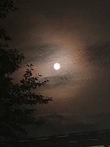 練習終わりの満月🌕 プリ画像