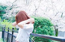 無断×の画像(春/Springに関連した画像)