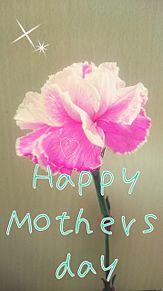 carnationの画像(ありがとに関連した画像)