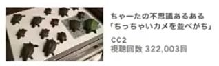 亀を並べる安くん3連発の画像(プリ画像)