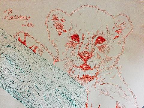 点描画 子ライオンの画像 プリ画像