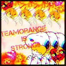 オレンジ団の画像(プリ画像)