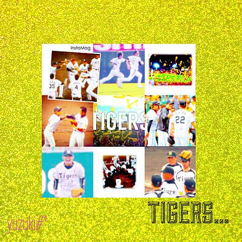 TIGERS*の画像(プリ画像)