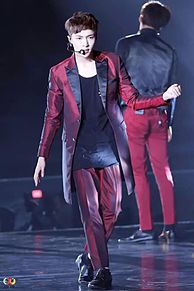 EXO レイ プリ画像