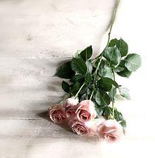 flowerの画像(Roséに関連した画像)