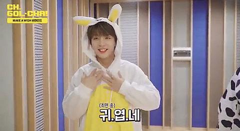 토끼 토끼の画像(プリ画像)
