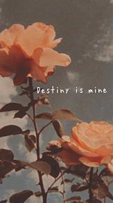 Destiny is mine の画像(Destinyに関連した画像)