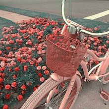 pink保存はハート💗使用はフォローお願いします⸜❤︎⸝の画像(宝石に関連した画像)