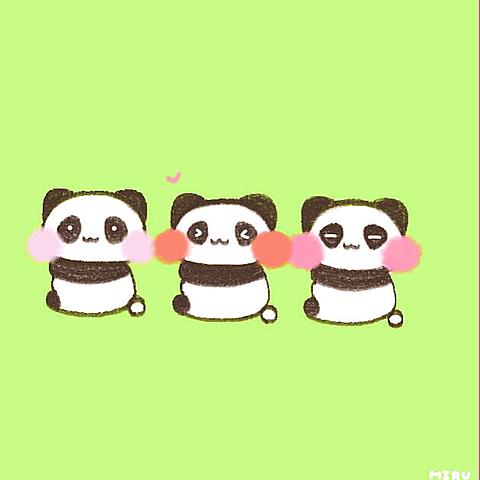 リクエスト パンダの画像(プリ画像)