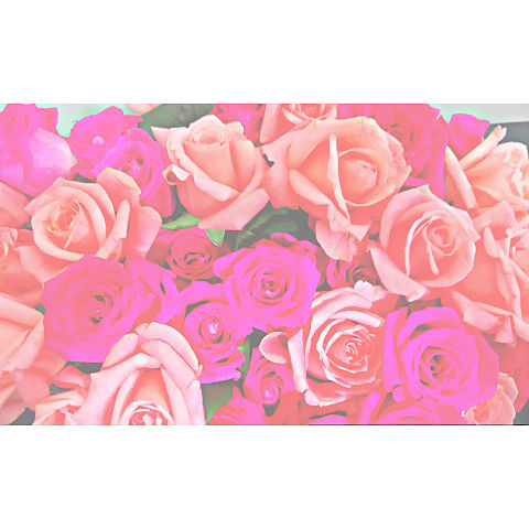 Flowerの画像 プリ画像