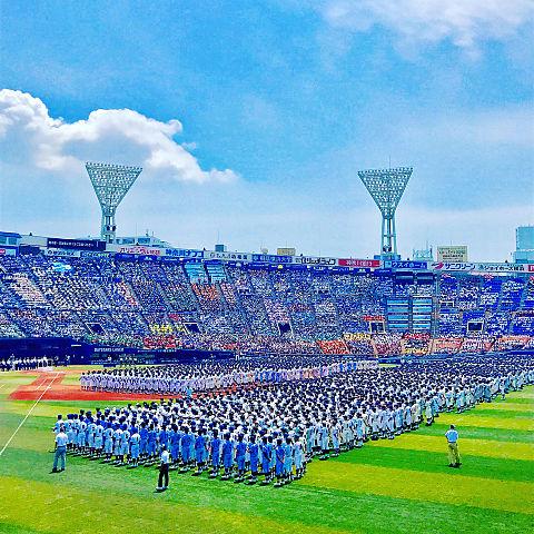 高校野球の画像 プリ画像