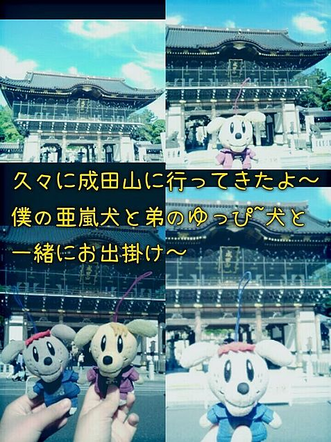 ٩(๑≧∀≦๑)و成田山へgo!の画像(プリ画像)