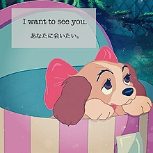 I want tosee you. プリ画像
