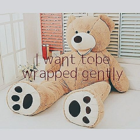 I want tobe wrapped gentlyの画像 プリ画像