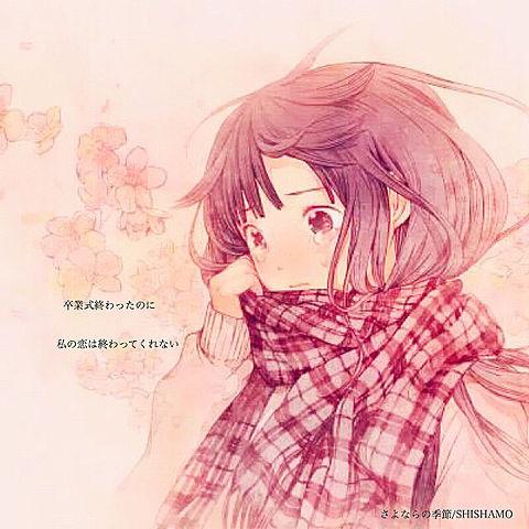 さよならの季節/SHISHAMOの画像(プリ画像)