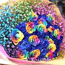 美しいレインボーローズの花束  ハートのいいねを押してね!の画像(レインボーローズに関連した画像)