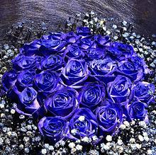 青いバラの花束  ハートのいいねを押してね!の画像(バラ 花束に関連した画像)