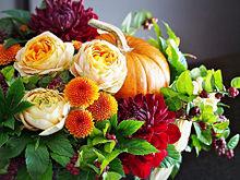 秋の花アレンジ おしゃれ  ハートのいいねを押してね!の画像(秋 おしゃれに関連した画像)