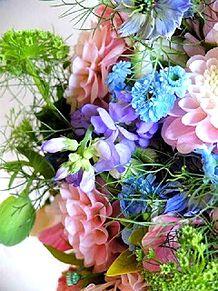 春色の花々 家庭画報より 写真右下のハートを押してねの画像(家庭に関連した画像)