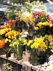 フラワーショップ 花屋さん 写真右下のハートを押してねの画像(花屋に関連した画像)