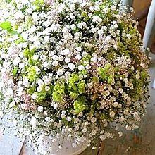 カスミソウの美しい花アレンジ 写真右下のハートを押してねの画像(カスミソウに関連した画像)
