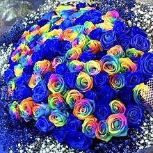 青いバラとレインボーローズ の花束  写真右下のハートを押してねの画像(レインボーローズに関連した画像)